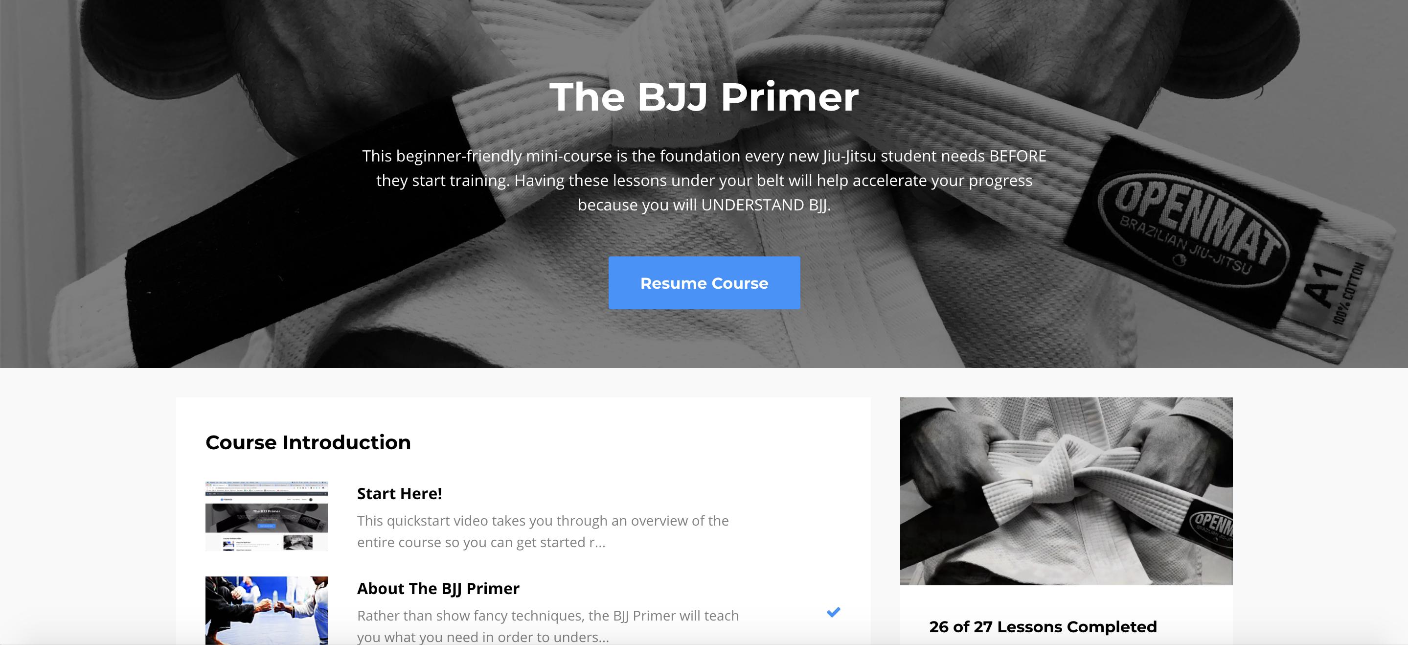 The BJJ Primer
